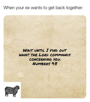 Lol, Memes, and Christian Memes: When your ex wants to get back together:  WAIT UNTIL I FIND OUT  WHAT THE LORD COMMANDS  CONCERNING YOU  NUMBERS 9: 11 More Christian Memes That Will Make You LOL This Week!