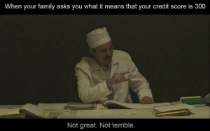 Family, Reddit, and Credit Score: When your family asks you what it means that your credit score is 300  Not great. Not terrible. It's an equivalent of a TV set loan