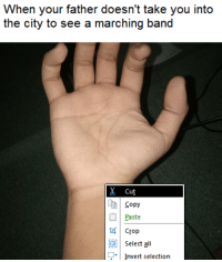 "Emo, Memes, and Good: When your father doesn't take you into  the city to see a marching band  Cut  Copy  Paste  Crop  Select all  .Invert selection <p>Are emo memes good investment? via /r/MemeEconomy <a href=""http://ift.tt/2hN77ht"">http://ift.tt/2hN77ht</a></p>"
