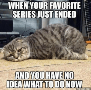 introvertproblems:JOIN THE INTROVERT NATION MOVEMENT: WHEN YOUR FAVORITE  SERIES JUSTENDED  AND YOU HAVE NO  DEA WHAT TO DO NOW  VIA 9GAG.COM introvertproblems:JOIN THE INTROVERT NATION MOVEMENT