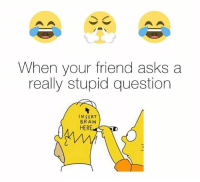 Really Stupid: When your friend asks a  really stupid question  INSERT  BRAIN  HER