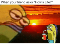 "Life, Asks, and Friend: When your friend asks ""How's Life?"""