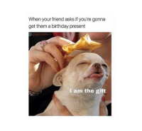 Birthday, Memes, and The Gift: When your friend asks if you're gonna  get them a birthday present  I am the gift