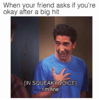 Memes, Okay, and Voice: When your friend asks if you're  okay after a big hit  [IN SQUEAKY VOICE)  I'm fine @weedhumor