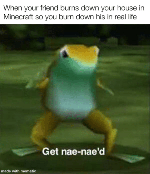 Life, Minecraft, and Nae Nae: When your friend burns down your house in  Minecraft so you burn down his in real life  Get nae-nae'd  made with mematic Get absolutely nae-nae'd