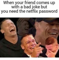 bad joke: When your friend comes up  with a bad joke but  you need the netflix password