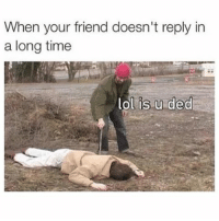Funny, Lol, and Memes: When your friend doesn't reply in  a long time  is u ded  lol ⠀