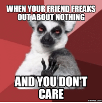 Care Meme: WHEN YOUR FRIEND FREAKS  OUT ABOUT NOTHING  AND YOU DONT  CARE  memes.COM