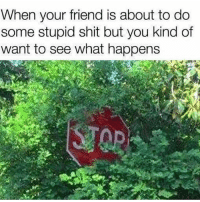 Accurate...😩😂💯 WSH: When your friend is about to do  some stupid shit but you kind of  want to see what happens Accurate...😩😂💯 WSH