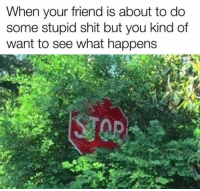 Shit, Friend, and You: When your friend is about to do  some stupid shit but you kind of  want to see what happens Stop