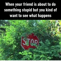 Must be the best drama you've ever seen.  https://9gag.com/gag/abM3V3B/sc/funny?ref=fbsc: When your friend is about to do  something stupid but you kind of  want to see what happens Must be the best drama you've ever seen.  https://9gag.com/gag/abM3V3B/sc/funny?ref=fbsc
