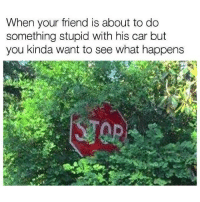 Memes, Boost, and 🤖: When your friend is about to do  something stupid with his car but  you kinda want to see what happens This could be interesting 😎 . . carmemes jdm turbo boost tuner carsofinstagram carswithoutlimits carporn instacars supercar carspotting supercarspotting stance stancenation stancedaily racecar blacklist cargram carthrottle itswhitenoise