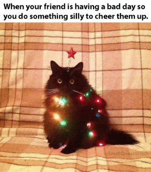 I'll be your light up kitty any time! via /r/wholesomememes https://ift.tt/2Yn04Rq: When your friend is having a bad day so  you do something silly to cheer them up.  SmalQueeritch I'll be your light up kitty any time! via /r/wholesomememes https://ift.tt/2Yn04Rq
