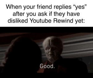 "Funny, Taken, and youtube.com: When your friend replies ""yes""  after you ask if they have  disliked Youtube Rewind yet:  Good. Rewind 2019 would have taken 20 minutes to make"