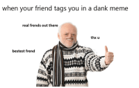 Dank, Meme, and Memes: when your friend tags you in a dank meme  real frends out there  thx u  bestest frend  州 Snapchat: DankMemesGang