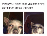 Dumb, Funny, and Lol: When your friend texts you something  dumb from across the roonm Tag this friend lol