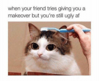 Af, Dank, and Friends: when your friend tries giving you a  makeover but you're still ugly af