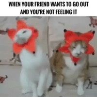 Funny, Friend, and Youre: WHEN YOUR FRIEND WANTS TO GO OUT  AND YOU'RE NOT FEELING IT Me on weekends