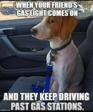 ⛽️ 🚘: WHEN YOUR FRIENDS  GASLIGHT COMES ON  AND THEY KEEP DRIVING  PAST GAS STATIONS. ⛽️ 🚘