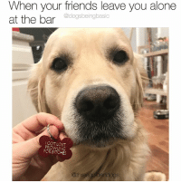 Being Alone, Friends, and Memes: When your friends leave you alone  @dogsbeingbasic  I GOT LOST  PROWLING  FOR BITCHES  @threegoldendogs I don't think he's ashamed. You're perfect the way you are Elliot. Pup @threegoldendogs