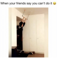 Friends, Memes, and 🤖: When your friends say you can't do it I gotta try! 😂 Credit: @apeksi @nikokor