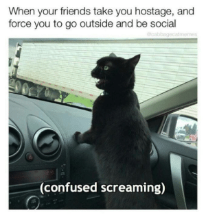 hostage: When your friends take you hostage, and  force you to go outside and be social  Ocabbagecatmemes  CY  00  (confused screaming)