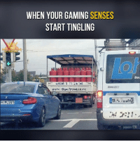 Memes, 🤖, and Tingling: WHEN YOUR GAMING SENSES  START TINGLING  Bec