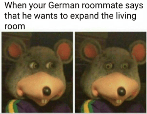 Roommate, Living, and German: When your German roommate says  that he wants to expand the living  room Lebensraum