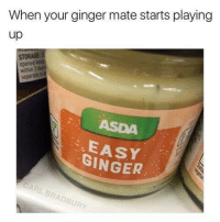 Easy ginger succulentmemes: When your ginger mate starts playing  up  STORAGE:  EASY  GINGER Easy ginger succulentmemes