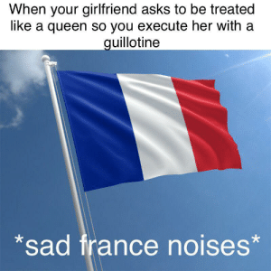 Vive la révolution: When your girlfriend asks to be treated  like a queen so you execute her with a  guillotine  sad france noises* Vive la révolution