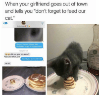 "ents: When your girlfriend goes out of town  and tells you ""don't forget to feed our  cat.""  く四  Kenzie Jones  Do you know if Wilson likes  chocolate chips in his pancakes  Today 01 AM  did you give him some?  Featured @will ent  Would you be mad if I did  No lol"