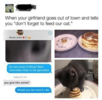 "Chocolate, Girlfriend, and Mad: When your girlfriend goes out of town and tells  you ""don't forget to feed our cat.  Kenzie Jones  Do you know if Wilson likes  chocolate chips in his pancakes  oday 1  you give him some?  Would you be mad if I did"