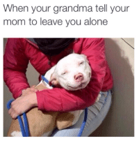 Grandmas always there to save the day.: When your grandma tell your  mom to leave you alone Grandmas always there to save the day.