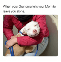 Being Alone, Grandma, and Dank Memes: When your Grandma tells your Mom to  leave you alone.  8 I miss her @earljunior