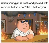 Gym, Memes, and Tbt: When your gym is trash and packed with  morons but you don't let it bother you  I0: @thegainz Tbt