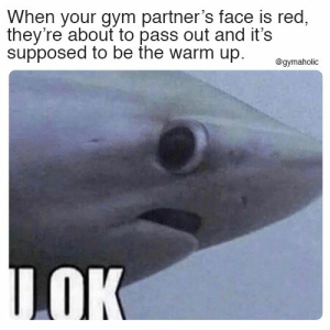 When your gym partner's face is read they're about to pass out and it's supposed to be the warm up.  More motivation: https://www.gymaholic.co  #fitness #motivation #gymaholic #meme: When your gym partner's face is red,  they're about to pass out and it's  supposed to be the warm up.  @gymaholic  LOK When your gym partner's face is read they're about to pass out and it's supposed to be the warm up.  More motivation: https://www.gymaholic.co  #fitness #motivation #gymaholic #meme