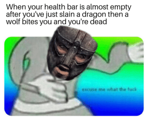 Fuck, Wolf, and Dragon: When your health bar is almost empty  after you've just slain a dragon then a  wolf bites you and you're dead  excuse me what the fuck Wait that's illegal