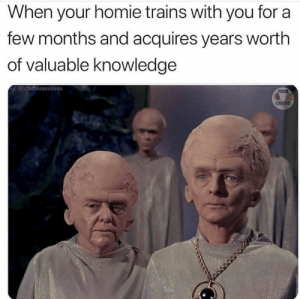 Mini me. Via @fuck_cardio: When your homie trains with you for a  few months and acquires years worth  of valuable knowledge  G:@spartaaaaaaaaa  FUCK  CARDIO Mini me. Via @fuck_cardio