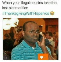 Illegal Memes: When your illegal cousins take the  last piece of flan