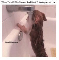 How finals got me like: When Your IN The Shower And Start Thinking About Life..  HoodClips.com How finals got me like