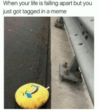 Life, Meme, and Tagged: When your life is falling apart but you  just got tagged in a meme :(