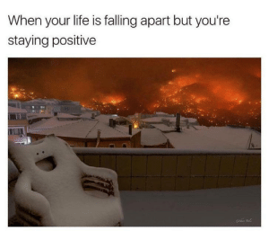 Meirl: When your life is falling apart but you're  staying positive Meirl
