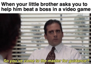 Guidance: When your little brother asks you to  help him beat a boss in a video game  So you've come to the master for guidance?