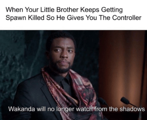 Frick, Watch, and Little Brother: When Your Little Brother Keeps Getting  Spawn Killed So He Gives You The Controller  Wakanda vwill no londer watch friom the shadows Frick Off!