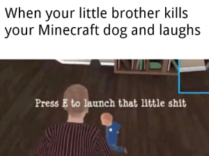 Peace was never an option.: When your little brother kills  your Minecraft dog and laughs  Press E to launch that little shit Peace was never an option.
