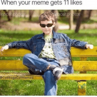 Youre Meme: When your meme gets 1T likes  @CabbageCatMemes