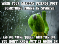 funny mexican memes: WHEN YOUR MEXICAN FRIENDS POST  SOMETHING FUNNY IN SPANISH  AND YOU WANNA Jajajaja WITH THEM BUT  YOU DON'T KNOW WTF IS GOING ON