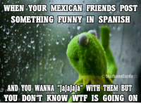 """Funny Memes In Spanish: WHEN YOUR MEXICAN FRIENDS POST  SOMETHING FUNNY IN SPANISH  Markass Cards  AND YOU WANNA Tajajaja"""" WITH THEM BUT  YOU DON'T KNOW WTF IS GOING ON"""