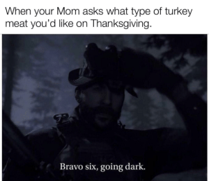 It's turkey time!: When your Mom asks what type of turkey  meat you'd like on Thanksgiving.  Bravo six, going dark. It's turkey time!
