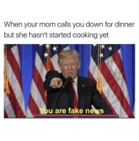 Facts, Fake, and Memes: When your mom calls you down for dinner  but she hasn't started cooking yet  You are fake news @betasalmon has alternative facts
